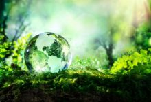 Photo of New Sustainability Options That Could Save The World
