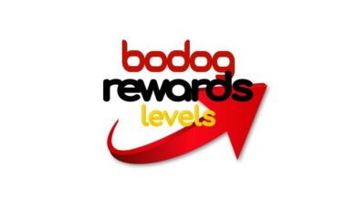 Photo of How Profitable Are Bodog Rewards Levels
